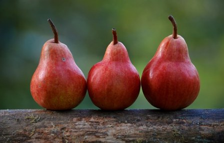 Organic Pears Buying Tips