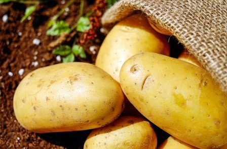 Organic Potatoes Buying Tips