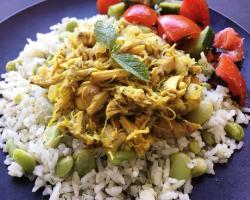 Slow Cooker Chicken w/ Mint & Onions (Chicken Do Piaza) Cooking Recipe